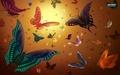 Vector Butterflies - butterflies wallpaper