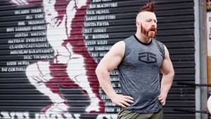 WWE Body Series - Sheamus