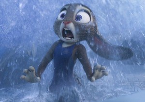 Wet Judy