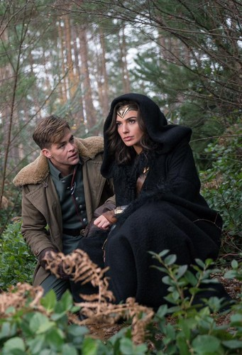 Wonder Woman (2017) fond d'écran probably with a green beret, a sitka spruce, and a beech called Wonder Woman - Steve Trevor and Diana Prince
