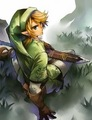 imageTwilight Princess!Link, The Hero Chosen by the Gods - the-legend-of-zelda photo