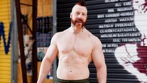 WWE Body Series - Sheamus