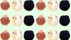 tumblr piggies Обои