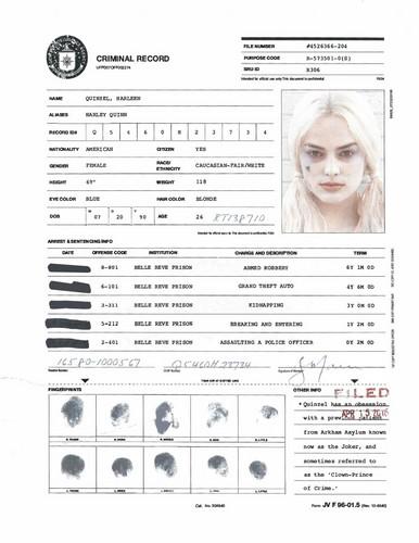 Harley Quinn wallpaper titled A.R.G.U.S. Files - Harley Quinn's Criminal Record