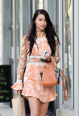 Adriana Lima out in Miami