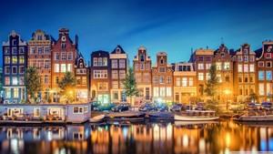 Amsterdam Lights.
