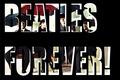 Beatles - the-beatles fan art