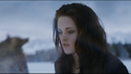Bella Cullen  - twilight-movie photo