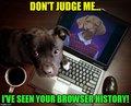 Browsing Raydog. - random photo