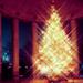 Christmas - christmas icon