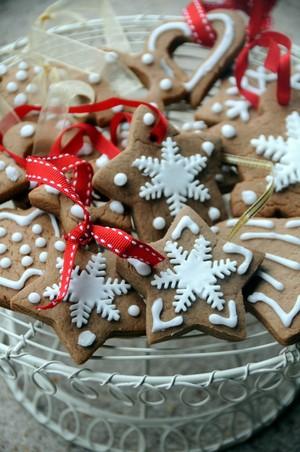 Natale biscotti, cookie