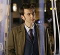 Daleks In Manhattan/Evolution of the Daleks - the-tenth-doctor photo