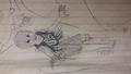 First sketch of Peter Pan - peter-pan fan art