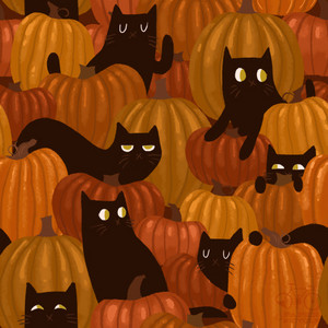 Halloween - Black Cats