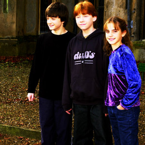 Harry, Ron and Hermione پرستار Art