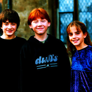 Harry, Ron and Hermione shabiki Art