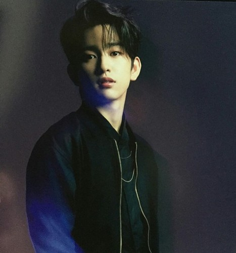 GOT7 वॉलपेपर possibly containing a well dressed person and an outerwear called Jinyoung💋 ❤
