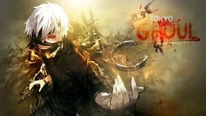 Kaneki Ken wallpaper tokyo ghoul 37445797 500 281