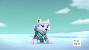 PAW Patrol 320B Scene 34 Everest