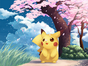 Pikachu pikachu 20568090 500 375
