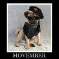 Pug Movember - animal-humor photo