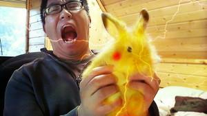 Real Life ピカチュウ Rabbit.