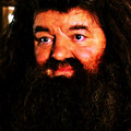 Rubeus Hagrid - harry-potter fan art