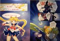 SM Exhibit - Colored manga - sailor-moon photo