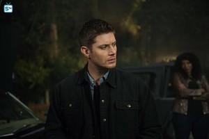 Supernatural - Episode 12.06 - Celebrating the Life of Asa cáo, fox - Promo Pics