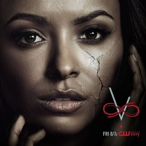 TVD s8 Promotional