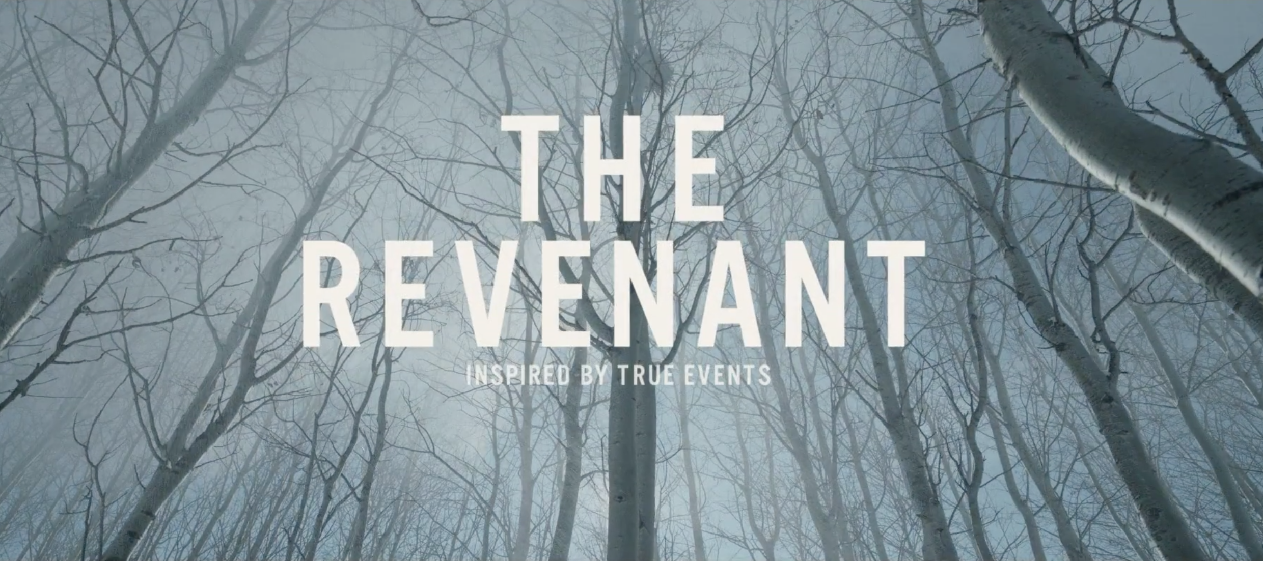 Movie Trailers Images The Revenant Wallpapers Hd Wallpaper And