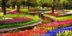 상단, 맨 위로 Beautiful Place in Netherlands.