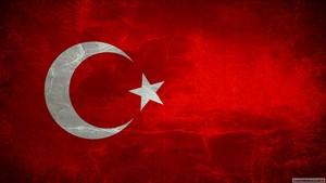 Turkiye Cumhuriyeti Bayragi