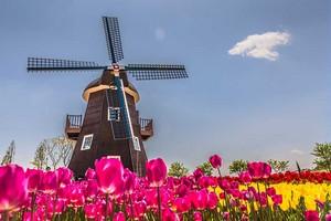 Windmill Netherlands.