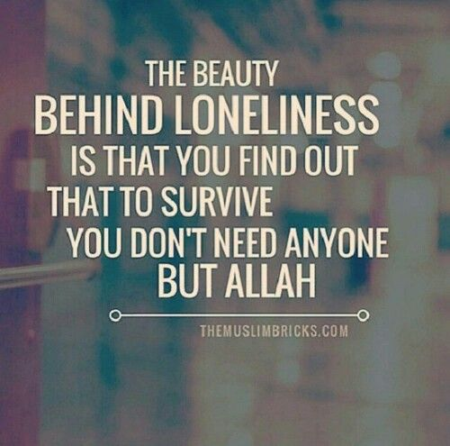 You need no one but Allah