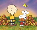 cbthanksgiving - peanuts photo