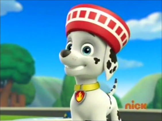 Marshall, the Dalmatian - PAW Patrol Photo (40125882) - Fanpop