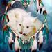 Otkon en h i Okwaho wolves 35557188 200 200 - wolves icon