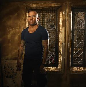 Prison Break S5 Cast