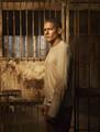 Prison Break S5 Cast  - prison-break photo
