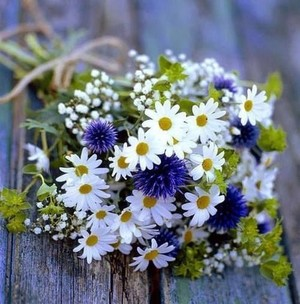 62555 Wild blume Bouquet