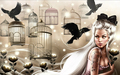 Birdcages    - fantasy photo