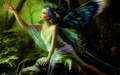 Butterfly Fairy - fairies photo