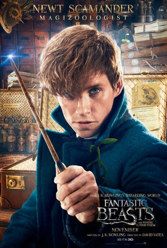 Fantastic Beasts and Where to Find Them wallpaper entitled Character Portrait ~ Newt Scamander