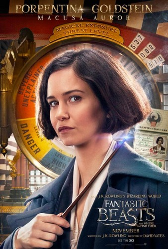 Fantastic Beasts and Where to Find Them wallpaper called Character Portrait ~ Porpentina Goldstein
