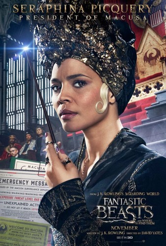 Fantastic Beasts and Where to Find Them wallpaper called Character Portrait ~ Seraphina Picquery