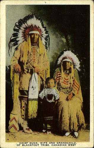 blackfoot tribe essay Blackfoot or siksika is an algonquian language spoken by many people in south america and northern montana the two domain dialects are pikanii and siksika blackfoot.