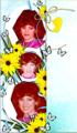 Debbie Bookmark - the-debra-glenn-osmond-fan-page fan art