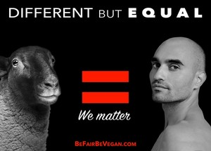 Different But Equal