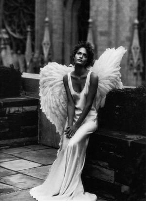 Dreamer Angel